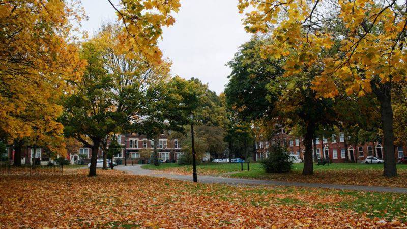 Blenheim Square