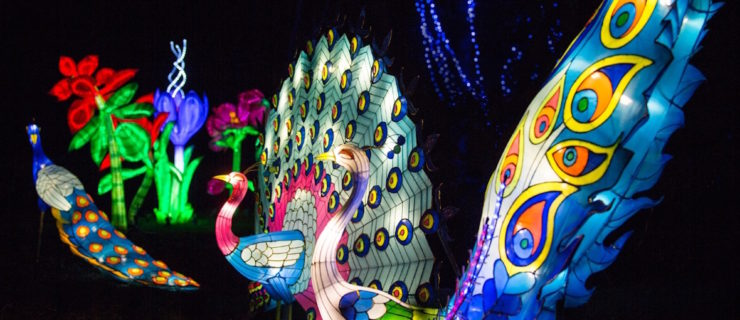 A Huge Chinese Lantern Festival