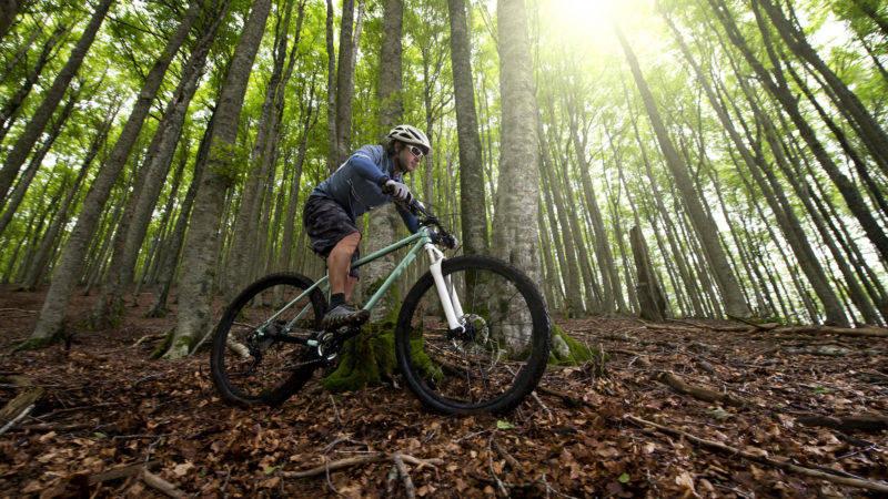 Mountain biking, cycling, bikes