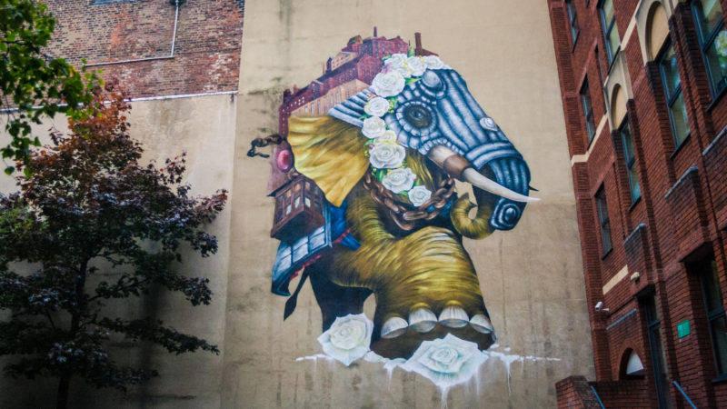 Winifred, Qubek, York Place