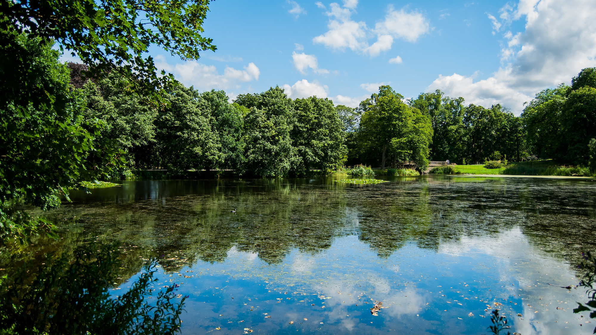 Lake, Nostell Priory and Parkland, Europe, England