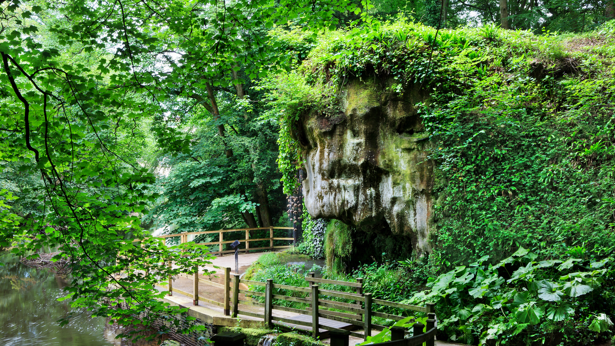Mother Shipton's Cave