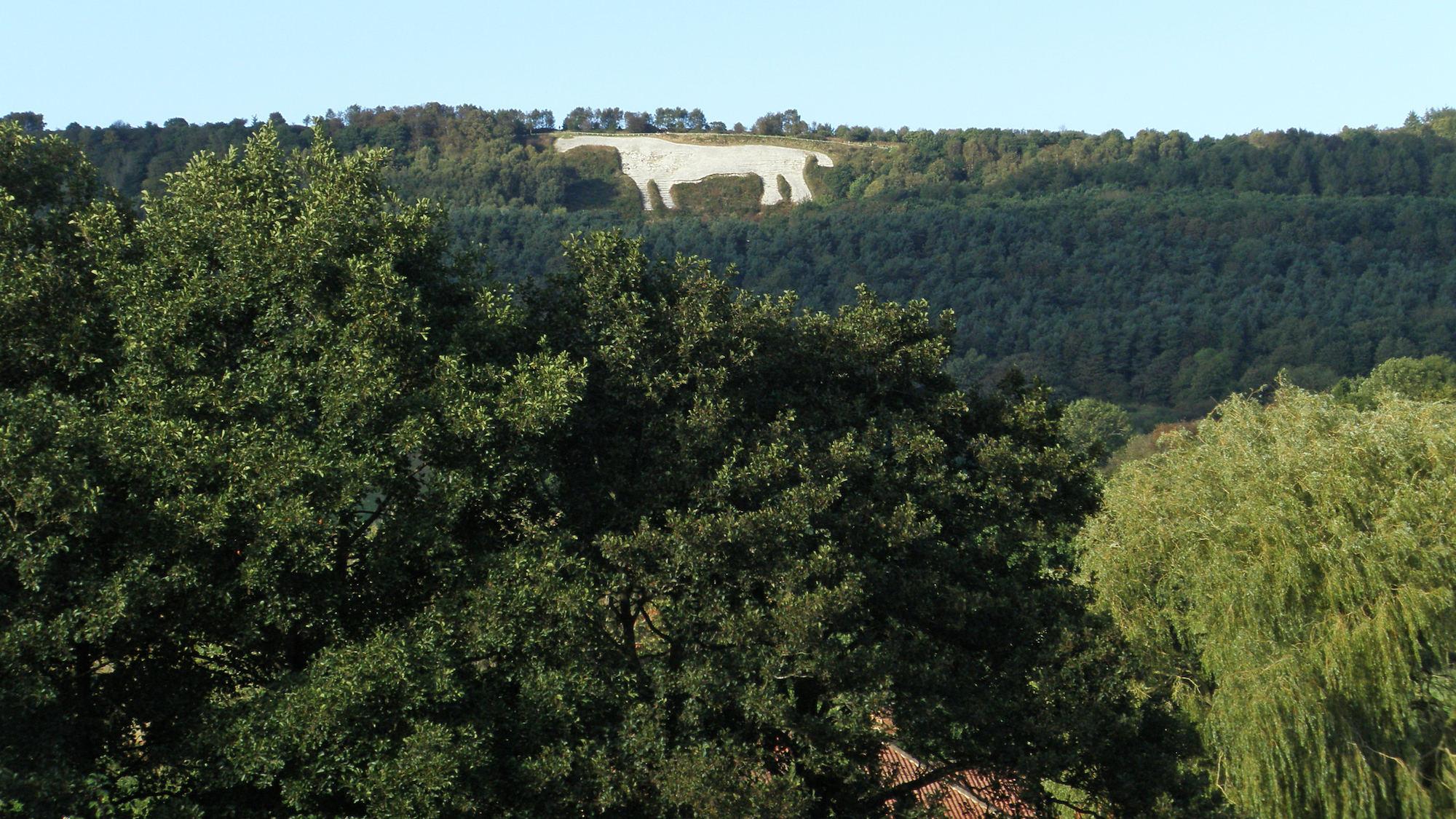 Kilburn Forest, White Horse