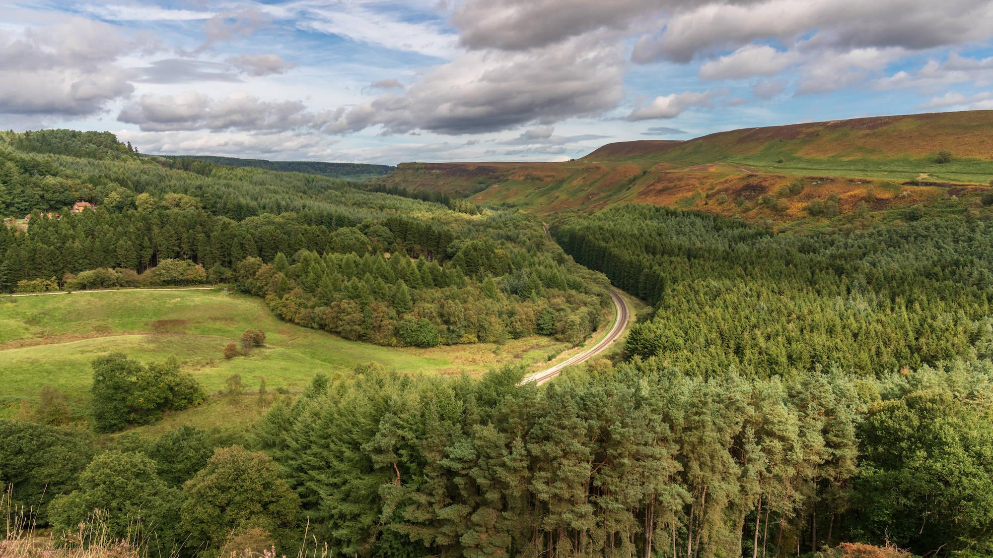 Levisham Moor, Newtondale, North York Moors