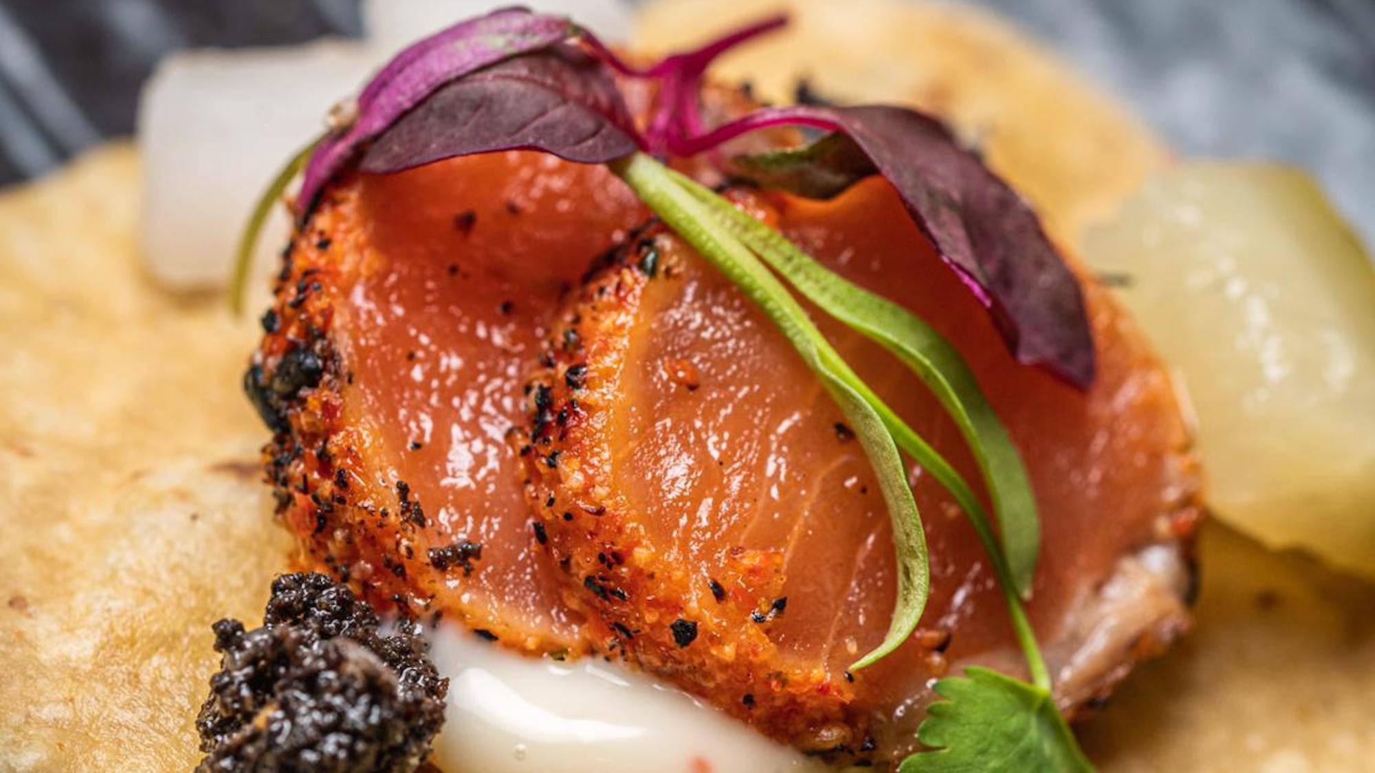 Tattu Salmon Shashizza