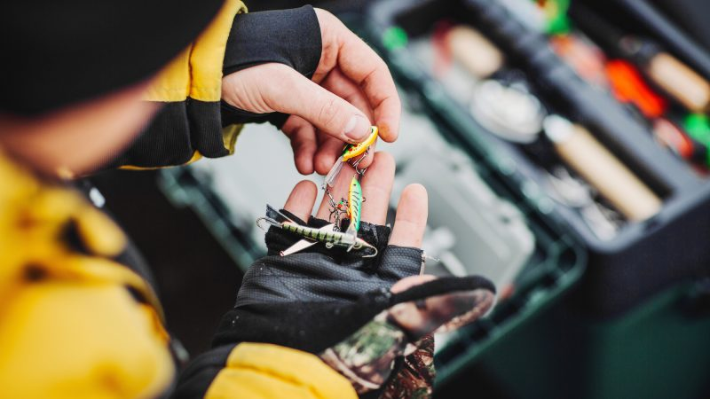 Fishing shops, tackle, bait, rods