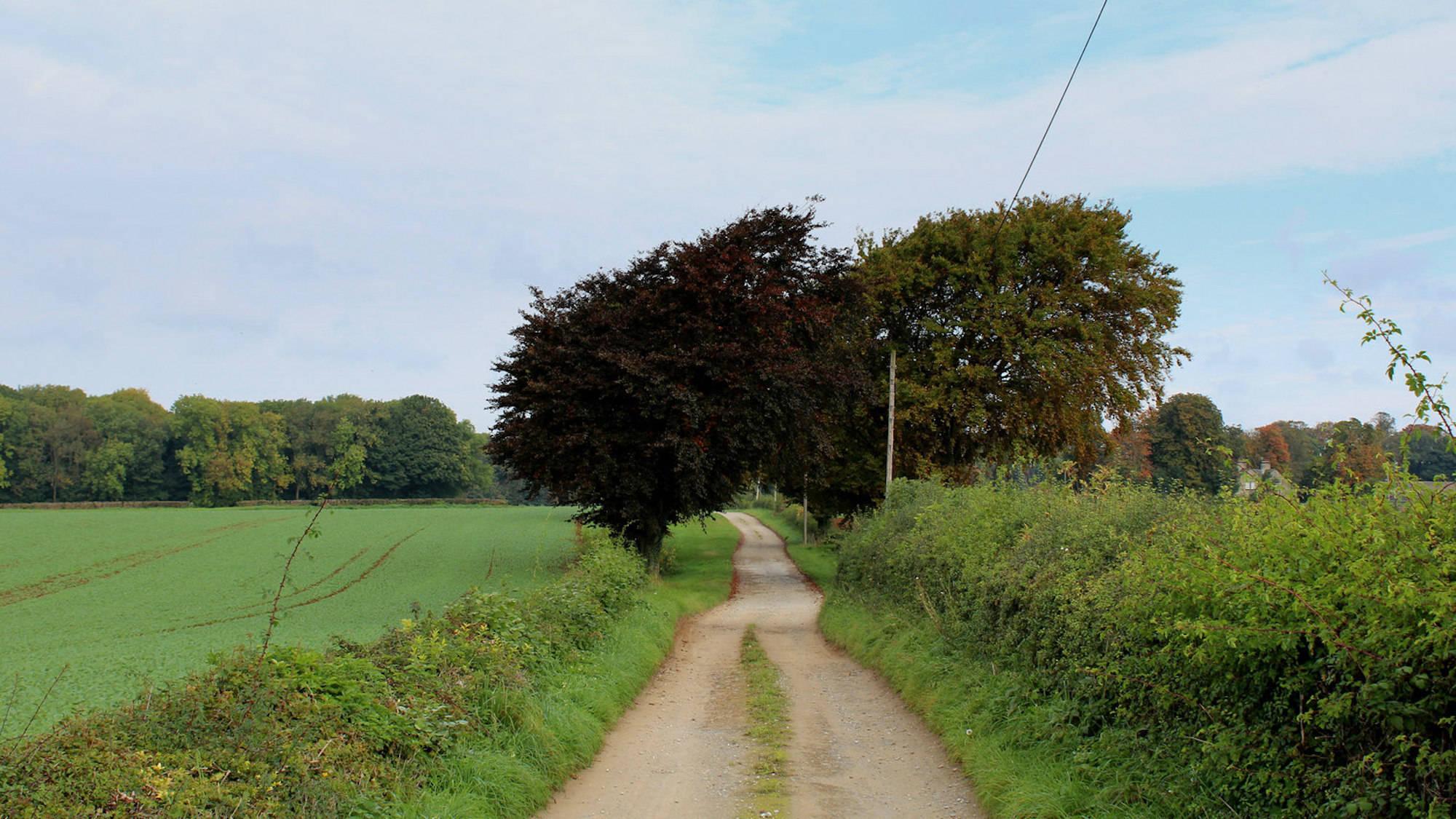 Sicklinghall, Stockeld Farm